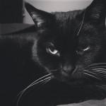 11.2.2014: Lucy, düster
